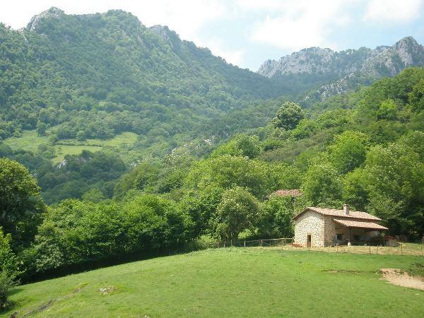 Asturias caba a rehabilitada a 10 kms de cangas de on s - Casa rustica cantabria ...